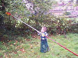Pauly picking apples! And only 3 1/2 too!